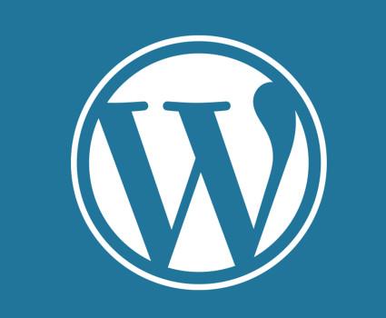 WordPress Installation Services.